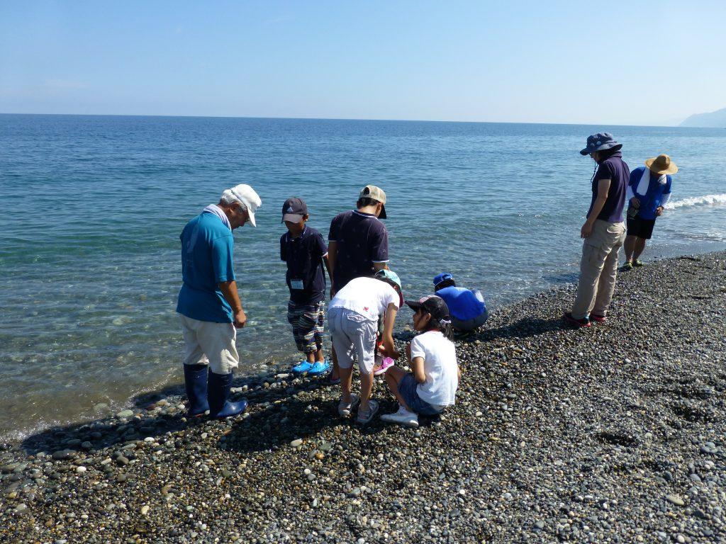 ヒスイ海岸で翡翠探し体験の様子